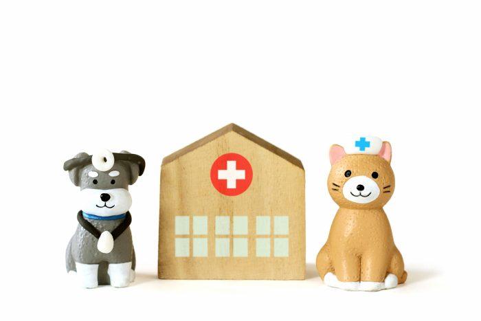 病院のおもちゃの画像